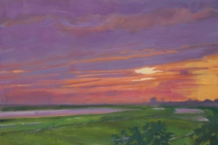 Low Country Fireworks Oil on Canvas 20x20