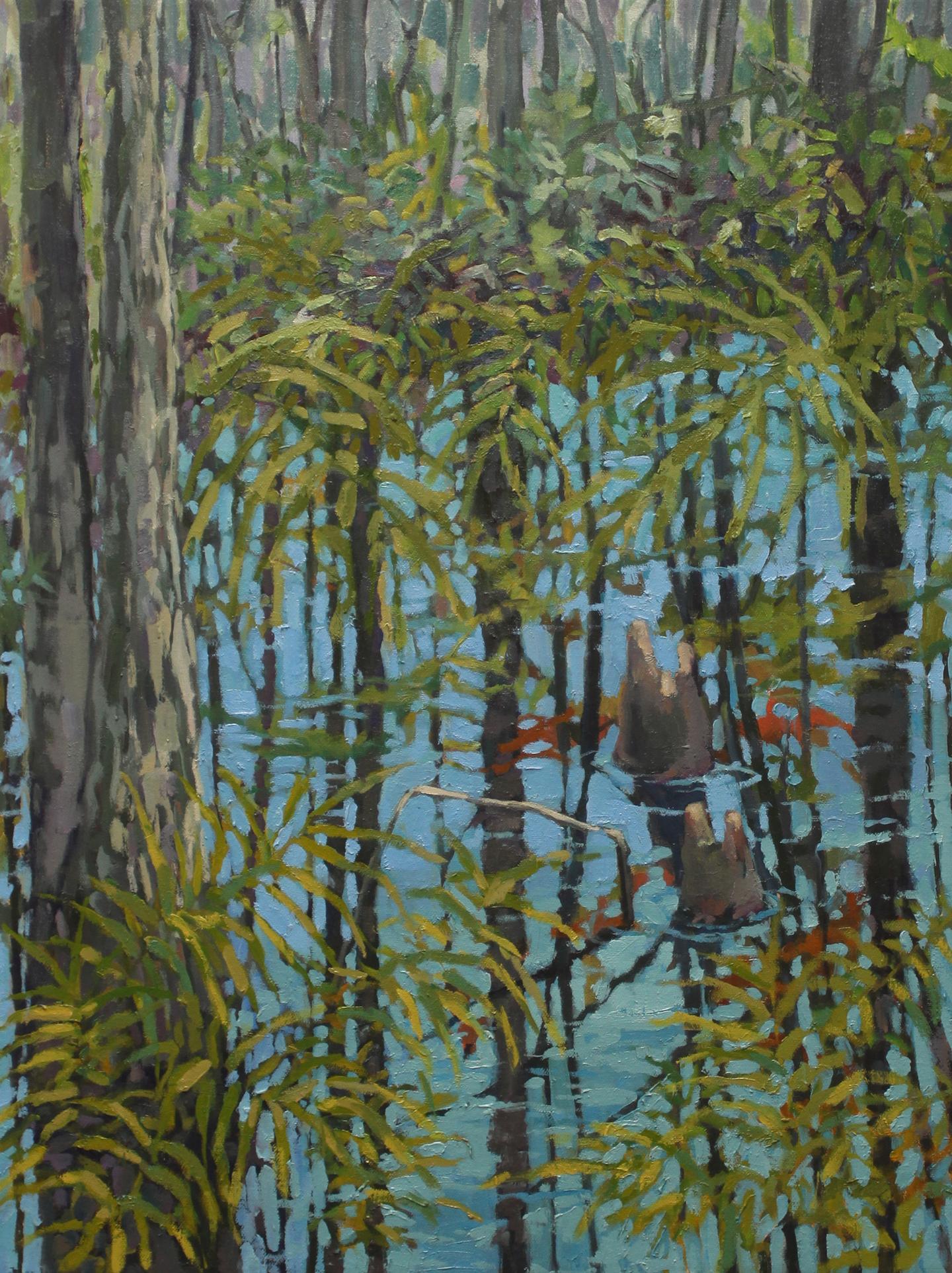 Everglades Reflection